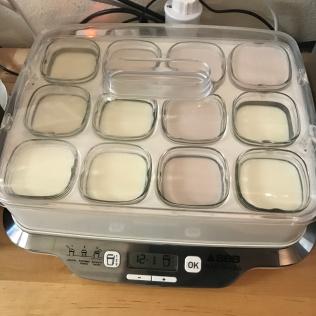 cette-annee-je-s2-yaourts