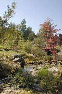 Brindemalice sortir en aout visite du jardin botanique